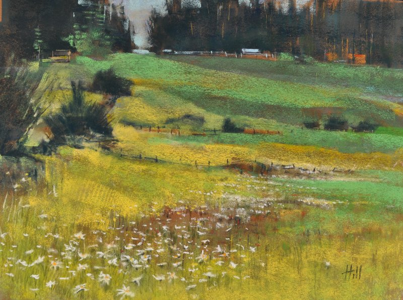 Late Spring Meadow, Lopez