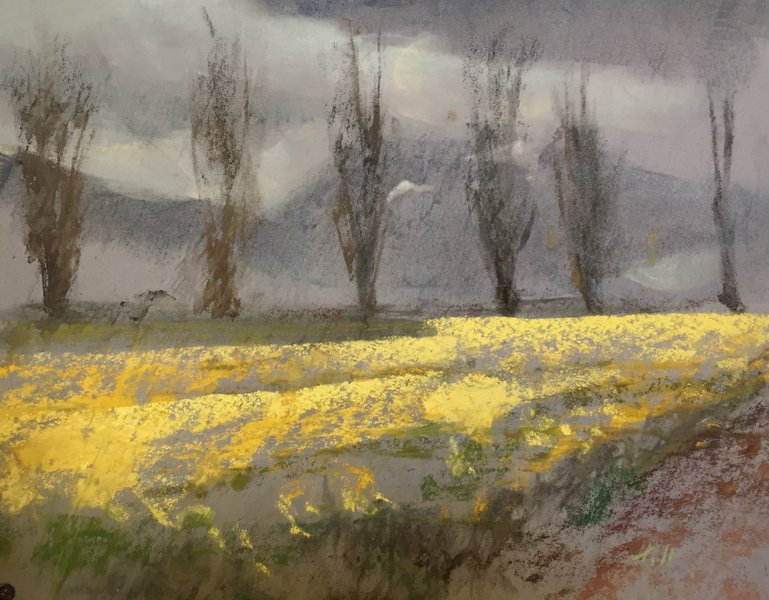 Study for Pending Rain and Spring Daffodil